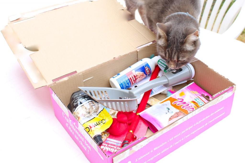 miaoubox_box